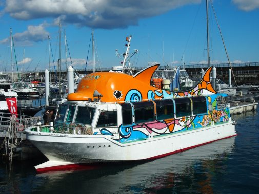 遊覧船 はるひら丸イルカ号